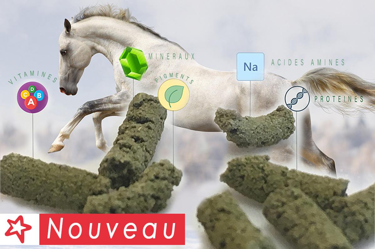 Complément minéral vitaminé chevaux Equicelt