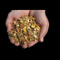 MASH AUX HERBES Aliment pour stimuler  le métabolisme et favoriser la digestion après l'effort.