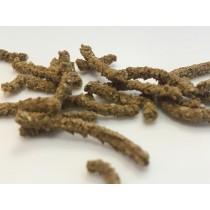 STOMACH, est un complément alimentaire de la famille des PROBIOTIQUES, qui permet de stabiliser, d'améliorer la digestibilité liée aux perturbations de la digestion.